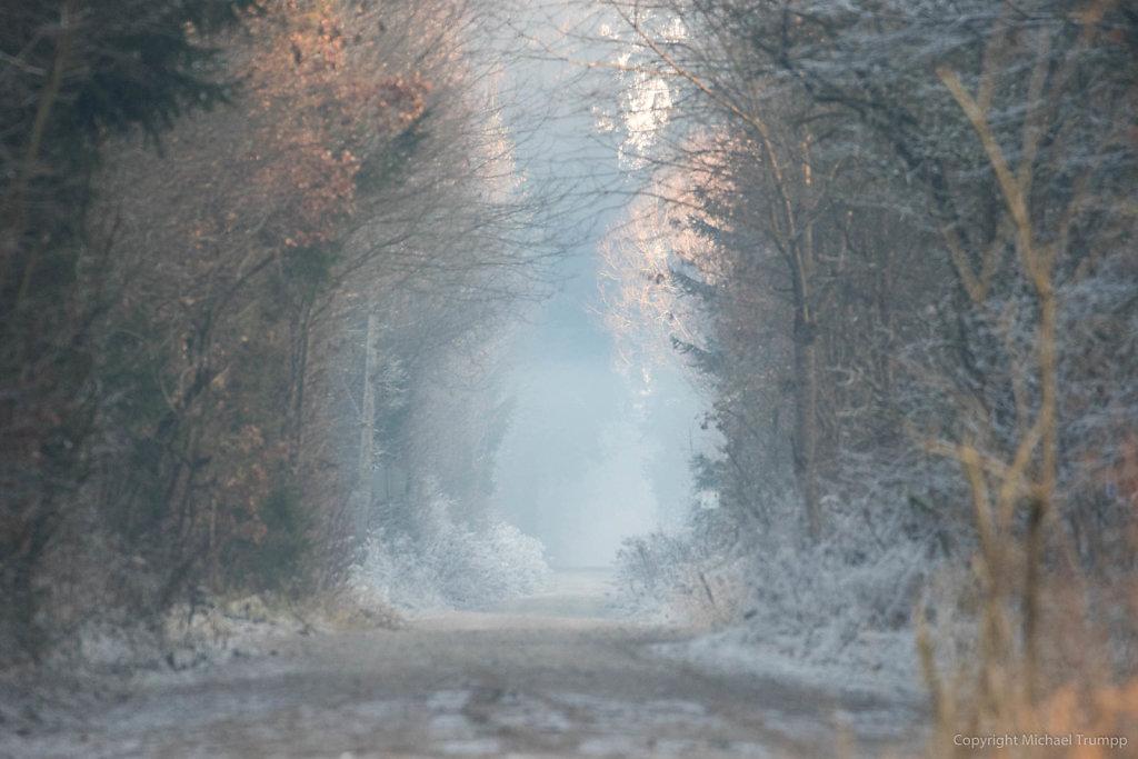 Winterspazierweg