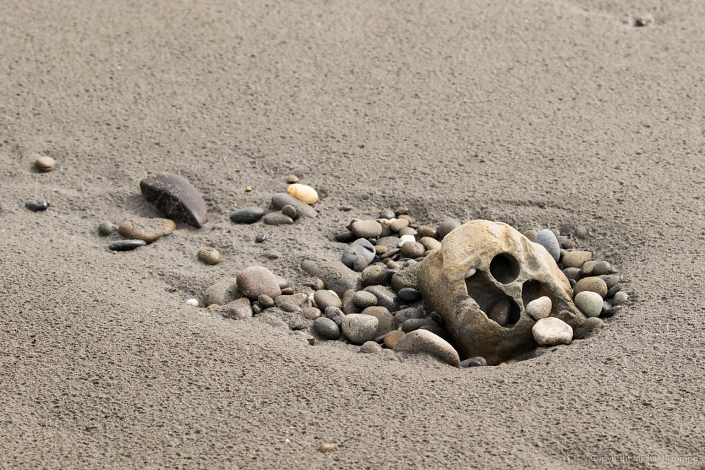 Creepy beach still life / Stillleben